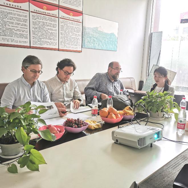 合作项目 | 欧感又一国际自平衡检测合作项目开花结果