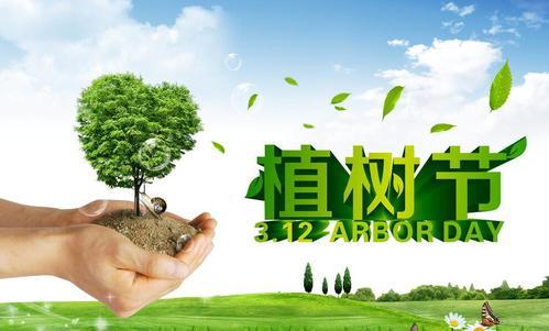 欧感 | 我们共植树,四海皆绿荫